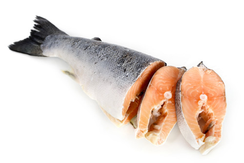 Ingredients in pet food for Protein in fish