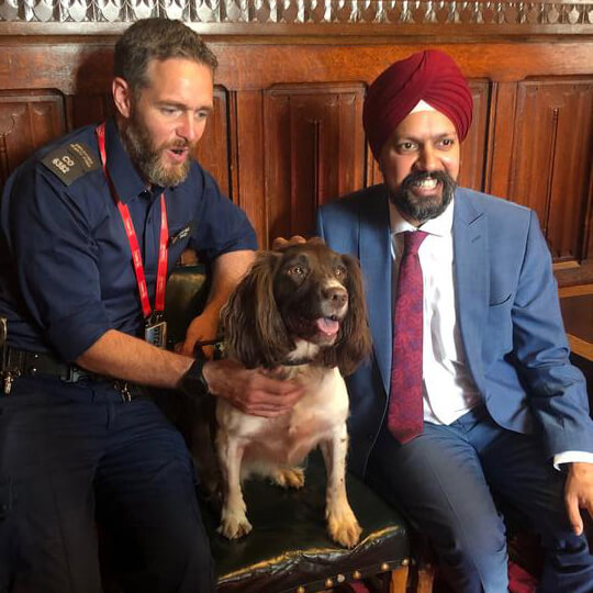 Pawfect Guests at the House of Commons