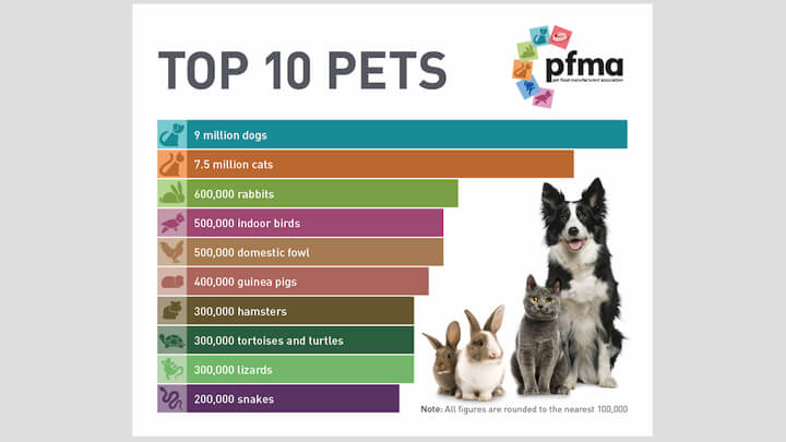 PFMA releases its NEW Top Ten Pets 2019 - Pets are the tonic for yappy days